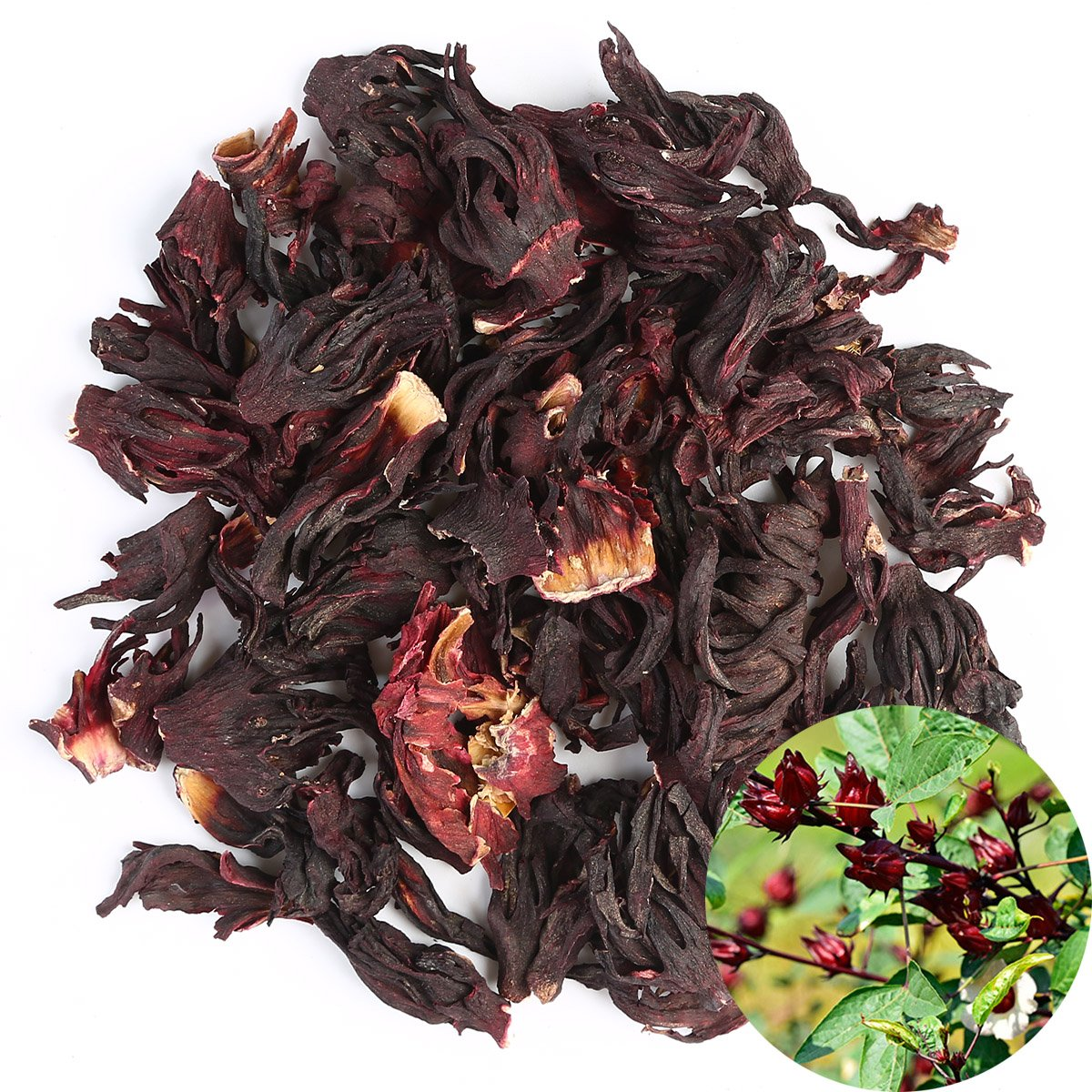 Amazoncom Tooget Organic Dried Hibiscus Flowers 100 Natural