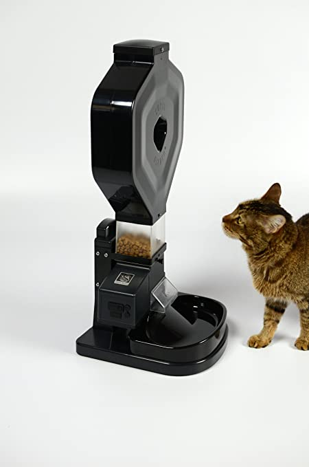 feeders bowl timer com feeder super stand automatic cat self dp amazon pet analog supplies csf