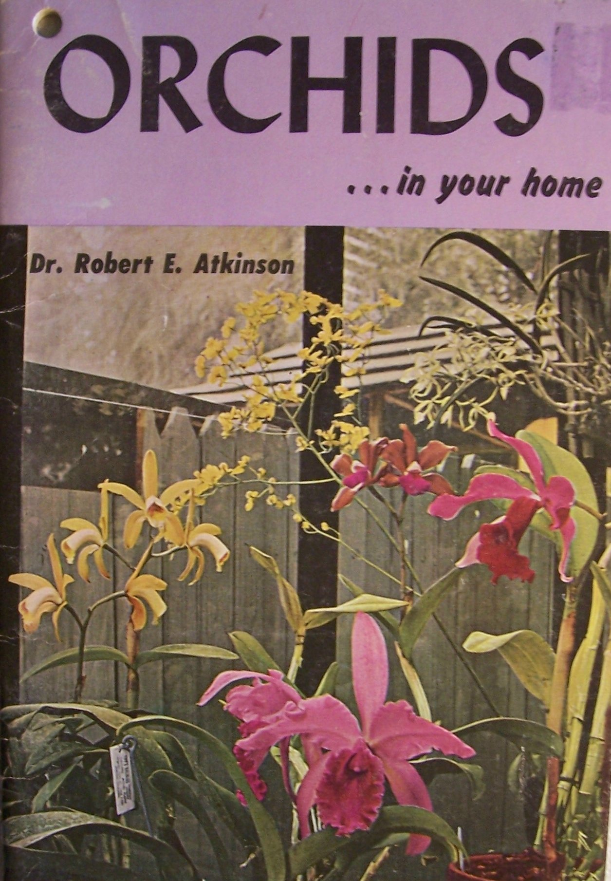ORCHIDS... in your home [ 1961 ] T. F. H. Publications, Inc. (What is an orchid? Propagation of orchids, General culture of orchids, Orchids as house plants, Indoor greenhouse, lathhouse and outdoor culture, A catalogue of the most popular orchids, Pests and diseases)