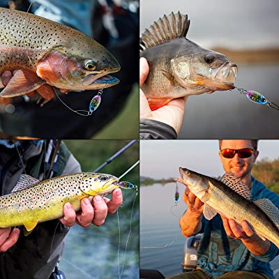 12pcs Freshwater Fishing Jigs With 3d Eyes Double-sided Reflective Mini Spoon for sale online