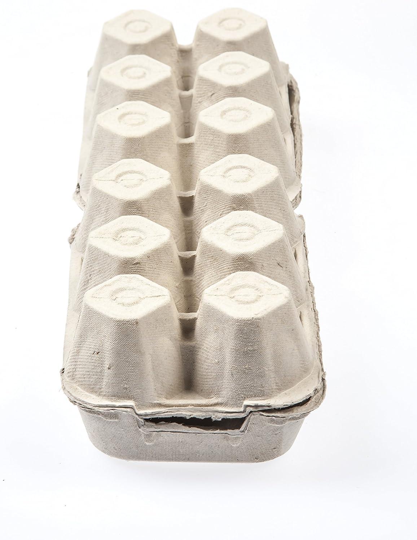 color gris. 60 Estuches de carton formato 6+6 XL