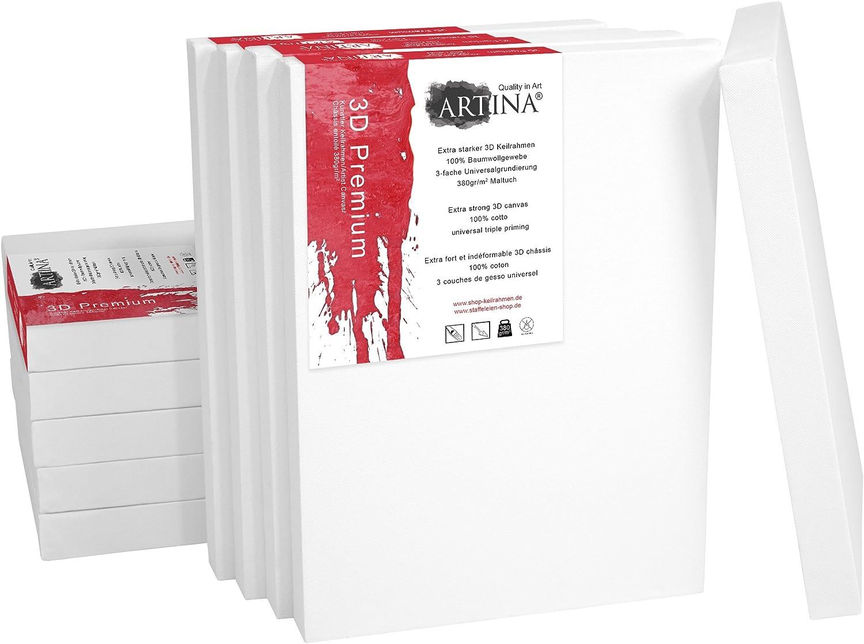 Artina 10 Deep Edge Canvases 40 x 50 cm Premium Quality Blank Art Canvas Bulk Stretched /& Triple Primed 16 x 20 Inch