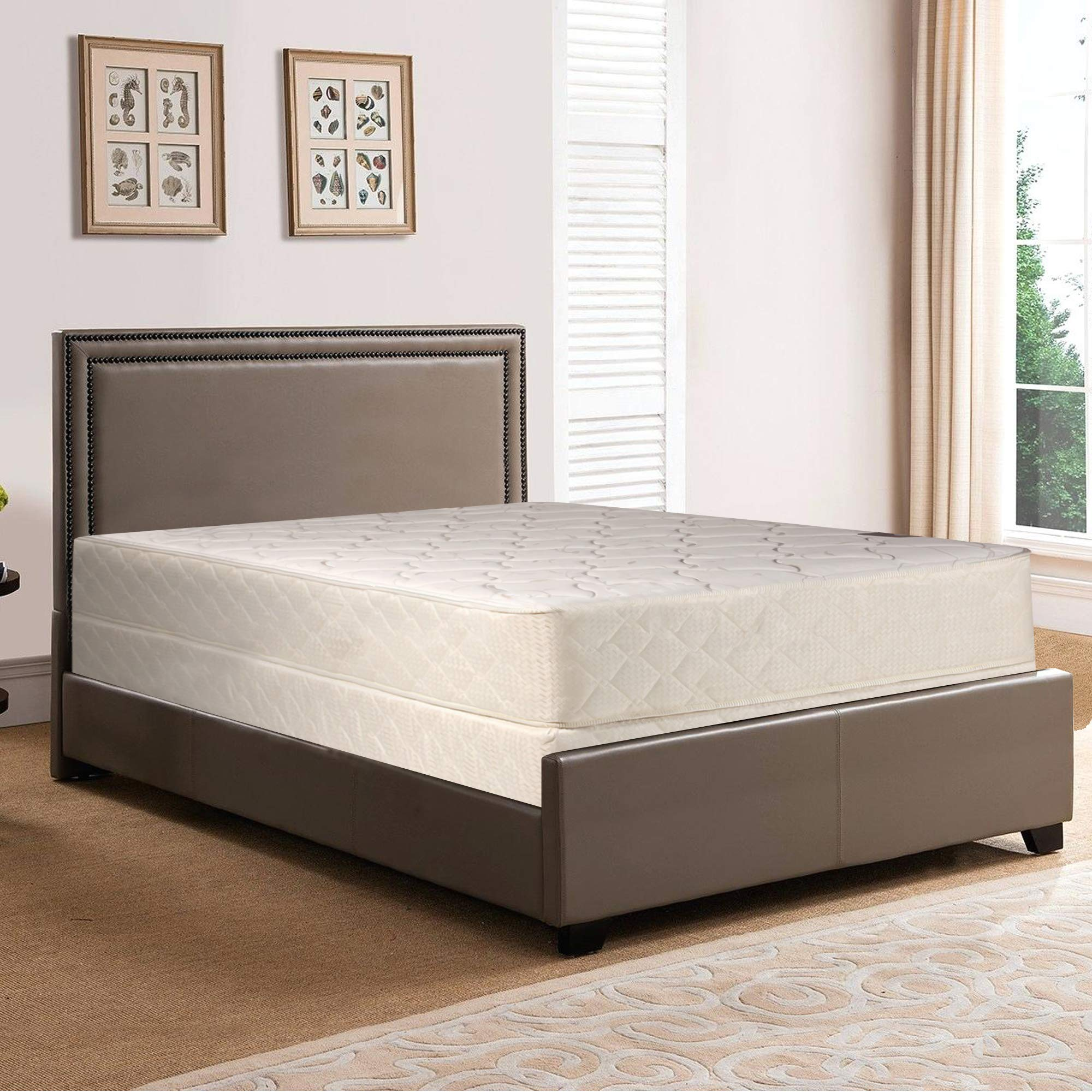 Fully Assembled Orthopedic Back Support Long Lasting 10'' Mattress and Box Spring Set by Spring Solution