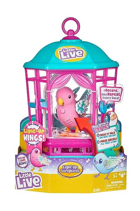 Amazon.es: little live pets 28624 - Cesta para pájaros con Luces ...