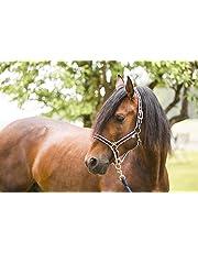 Covalliero - Testiera per Cavallo Collezione Primavera-Estate 2017