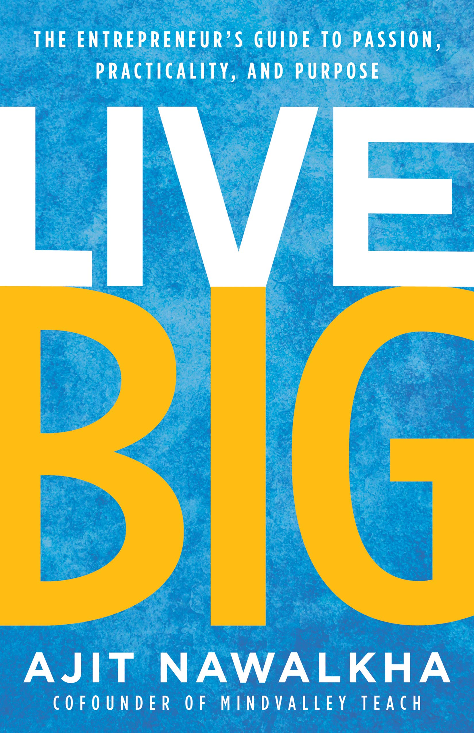 Live Big: The Entrepreneur's Guide to Passion, Practicality, and Purpose pdf epub