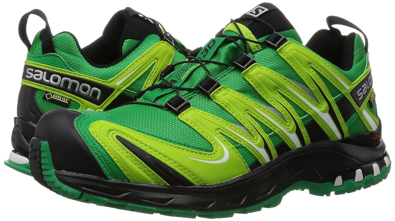 Salomon Shoes XA Pro 3D Ultra 2 GTX 329823 highway asphalt