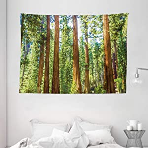 Ambesonne National Parks Home Decor Tapestry, Up View of Tree Branches Spring Conifers Sequoia Art Prints, Wall Hanging for Bedroom Living Room Dorm, 80 W X 60 L Inches, Green Brown