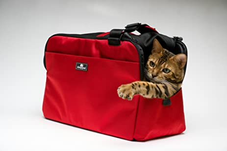 Sleepypod Atom   Strawberry Red   In Cabin Airline Approved Pet Carrier By  Sleepypod