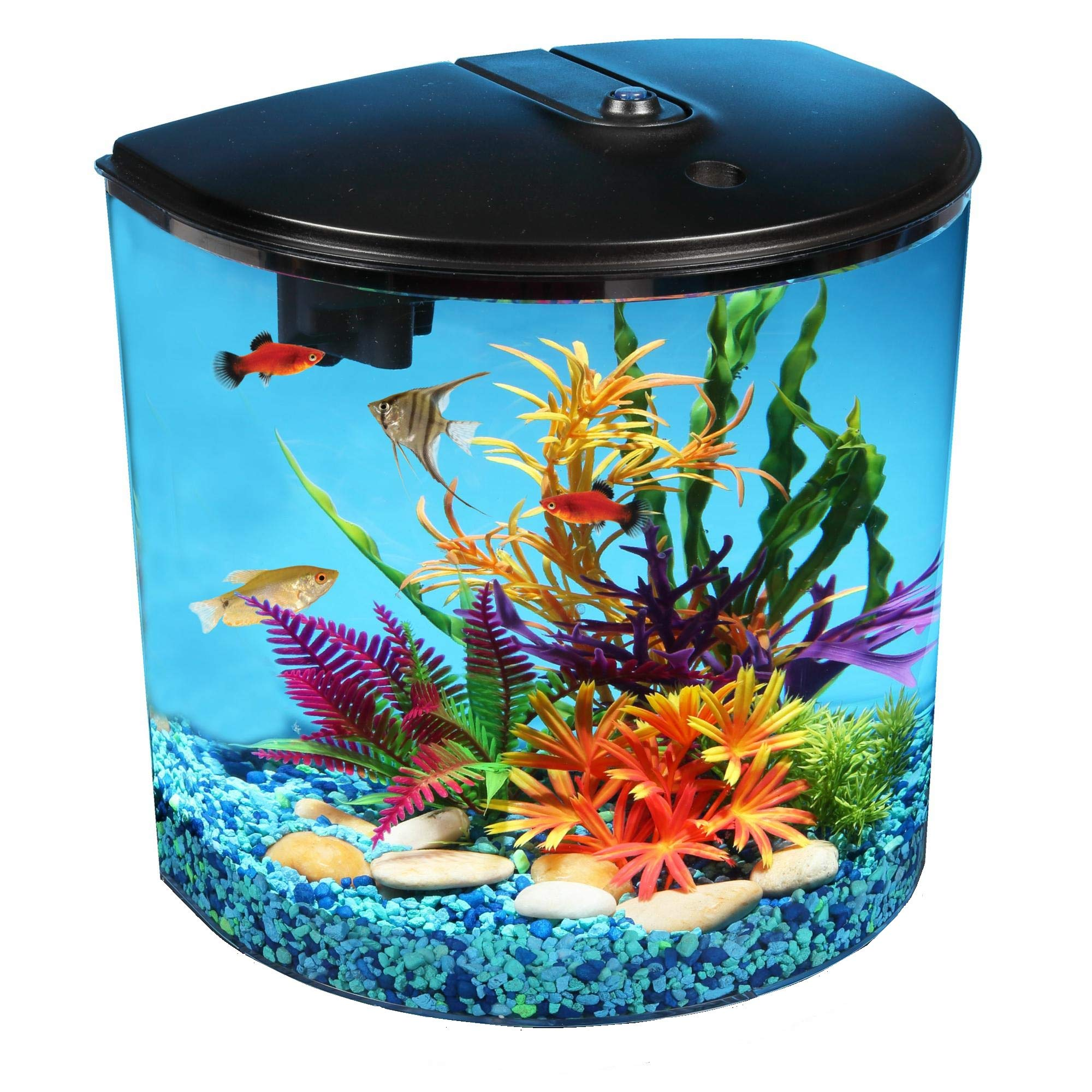 AquaView 3.5 gallon Fish Tank with Power Filter & LED Lighting by Koller Products