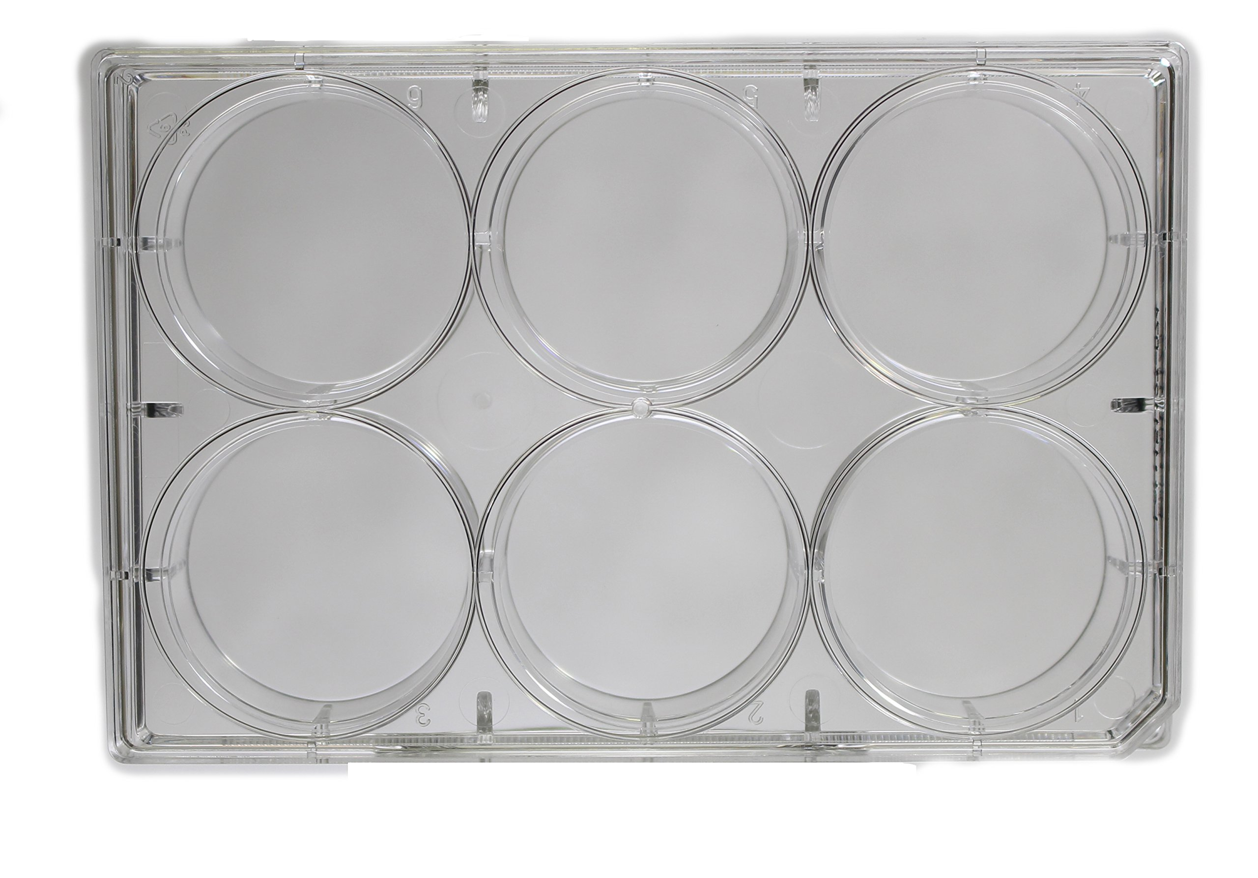 6 Well Cell and Tissue Culture Plates, Non Treated, Sterile, Case of 100