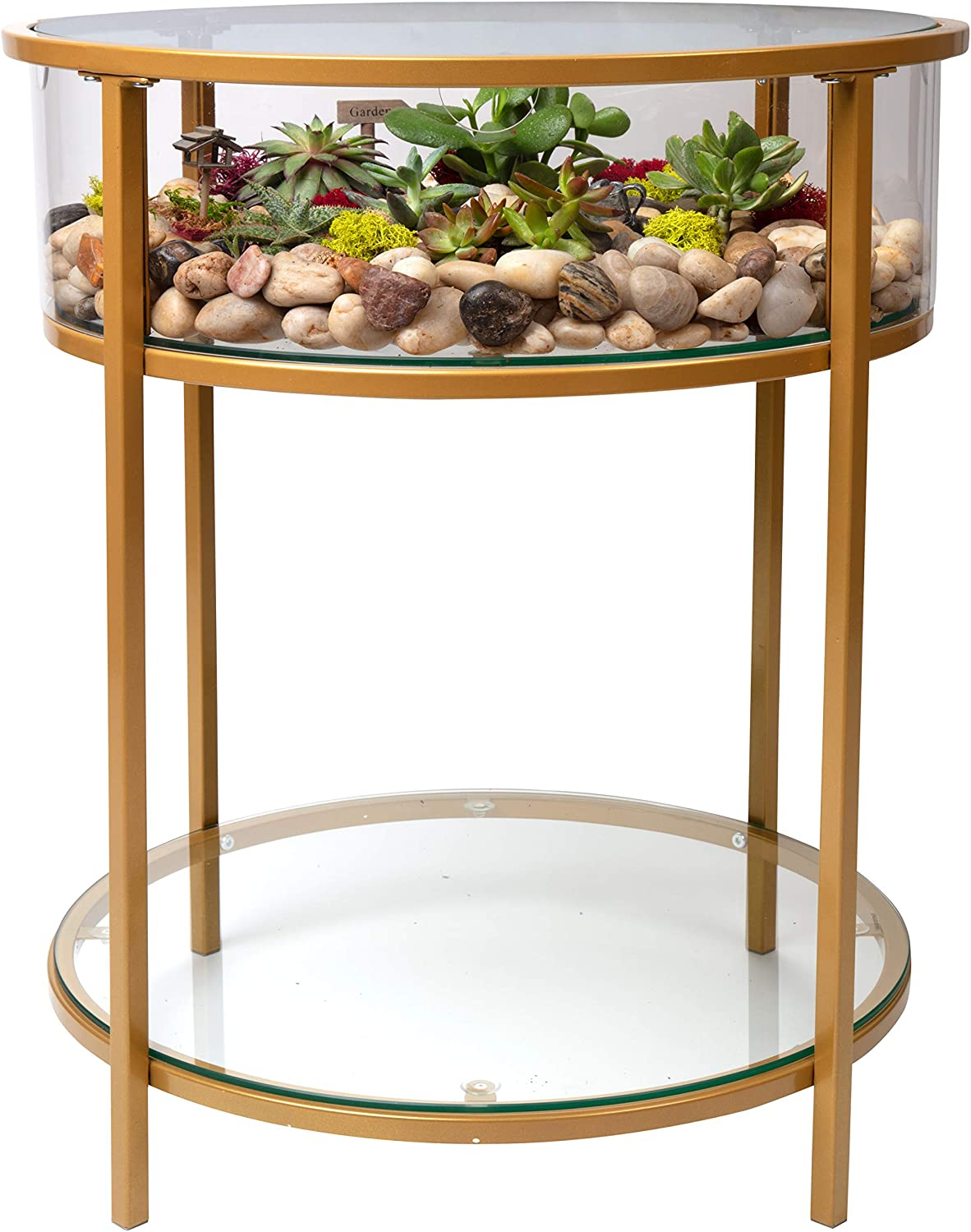 Amazon Com Round Terrarium Display End Table With Reinforced Glass In Gold Iron 20 Diameter 26 5 Height Great Indoor Decor For Any Home Or Office Diy Garden For Fern Moss Succulents Holiday Wedding [ 1500 x 1184 Pixel ]