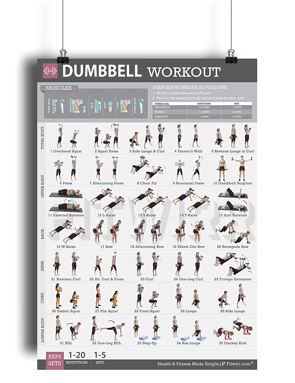 Dumbbell exercises workout poster now laminated strength dumbbell exercises workout poster now laminated strength training workout chart home gym weight lifting routine geenschuldenfo Choice Image
