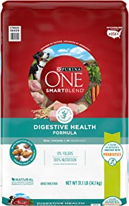Purina ONE SmartBlend Natural Sensitive Systems, Digestive Health Adult Dry Dog Food