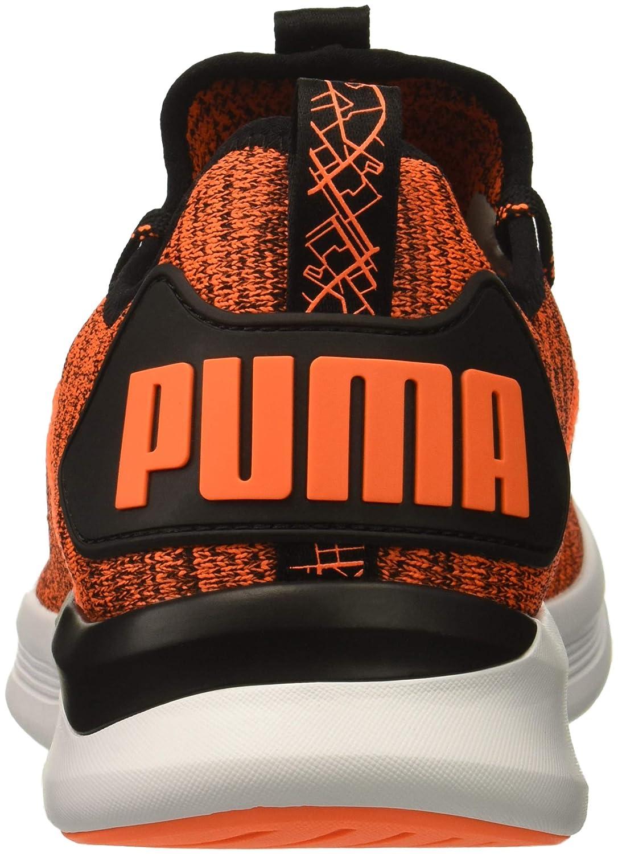 Puma Ignite Flash Flash Flash Evoknit Herren Turnschuhe  47d5a0