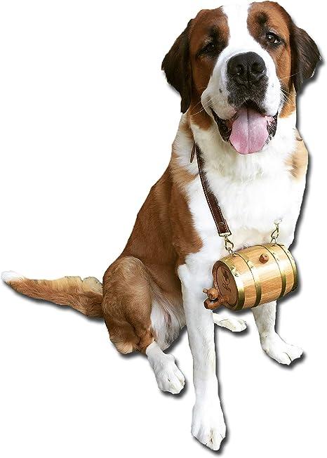 collier pour chien saint bernard