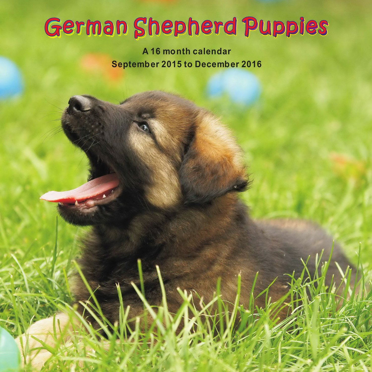 Download German Shepherd Puppies Calendar - 2016 Wall calendars - Dog Calendars - Monthly Wall Calendar by Magnum pdf