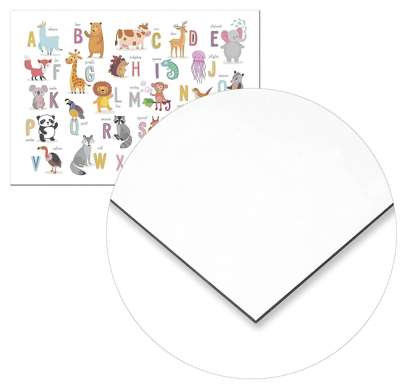 Decorazione Parete Panorama/® Poster per Cameretta del Bambini Alfabeto Animali 30x21cm Quadri Cameretta Bambini Neonati Stampato su Carta 250 gr Stampe da Parete Bambini