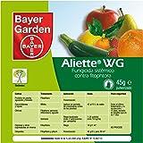Bayer Garden Aliette - Fungicida Sistémico para Césped y Coníferas, 45g
