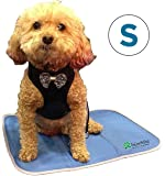 TheGreenPetShop Dog Cooling Mat – Gel Self Cooling Mat for Dogs – The Must-Have Cool Pet Pad for Hot Summer Weather…