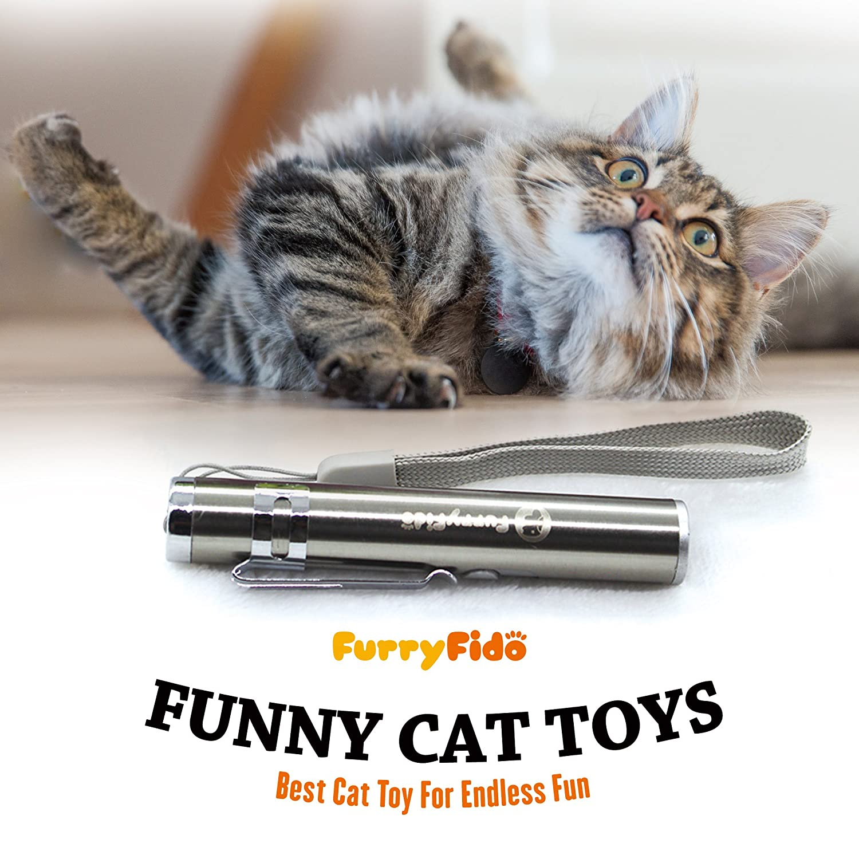 fun cat toys