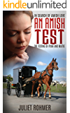 AN AMISH TEST: The Testing of Ryan and Mattie (In Search of Amish Love Book 3)