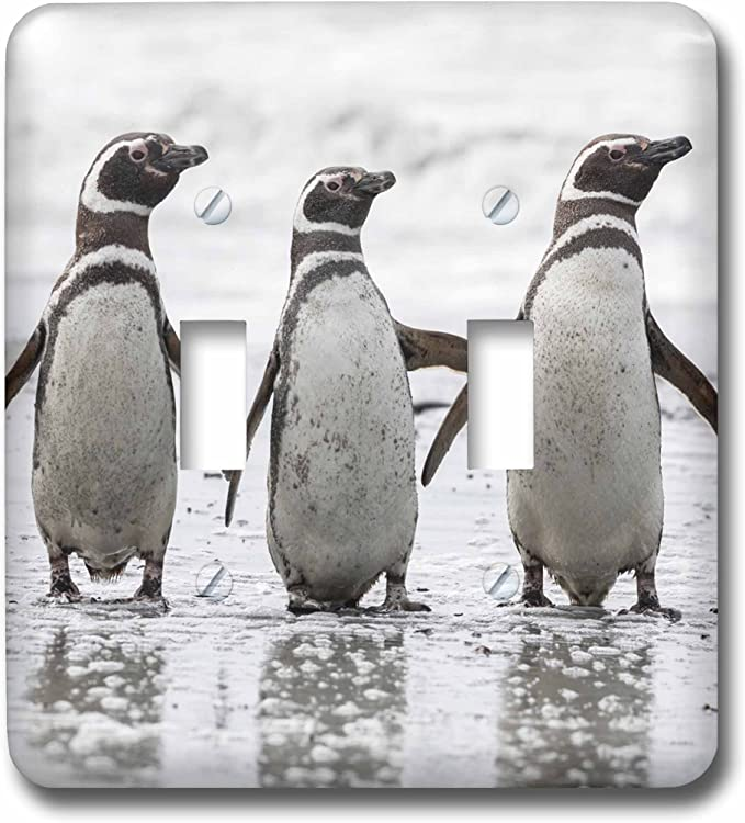 Falkland Islands Double Toggle Switch 3D Rose LSP/_229097/_2 Three Magellanic Penguin on Beach