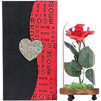 """Langxun Silk Rose """"bellezza e bestia"""" Fiore artificiale in cupola di vetro e base in legno ricoperta da vero muschio con bella scatola regalo per decorazione domestica regalo di san valentino"""