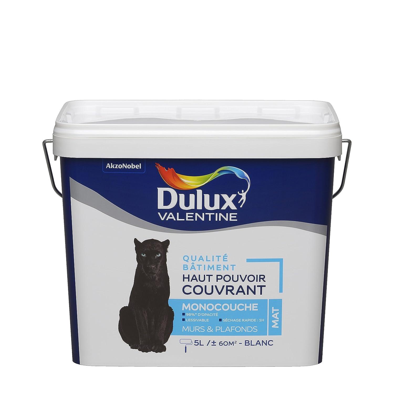 Peinture DULUX VALENTINE qualité bâtiment - haut pouvoir couvrant - monocouche blanc mat 5L AkzoNobel 5239065