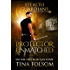 Protector Unmatched (Stealth Guardians Book 6)