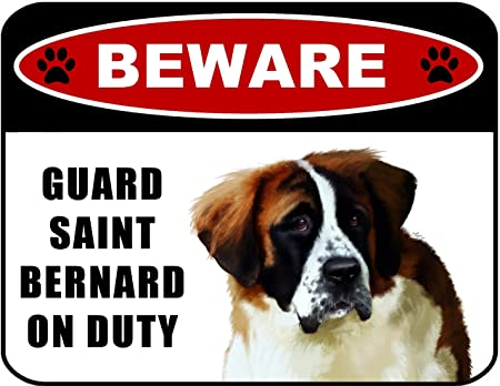 Amazon.com: Cuidado con guardia San Bernardo (V1) de ...