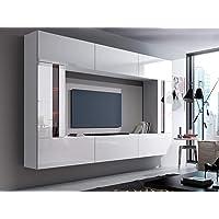 HomeDirectLTD FUTURO Unidad 28 Consola de pared, Entretenimiento Premium Package, de alto brillo / Mat 28_hg_w_2