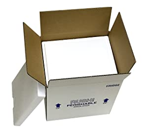 """Fridge Cooler Insulated Carton w/Foam Ship 13 Quarts, 9.5"""" Length x 7.5"""" Width x 10.5"""" Depth, (Inside Dimensions of Cooler), 3/4"""" Wall Thickness, Pre-Packed Inside Cardboard Shipping Box (Pack of 2)"""