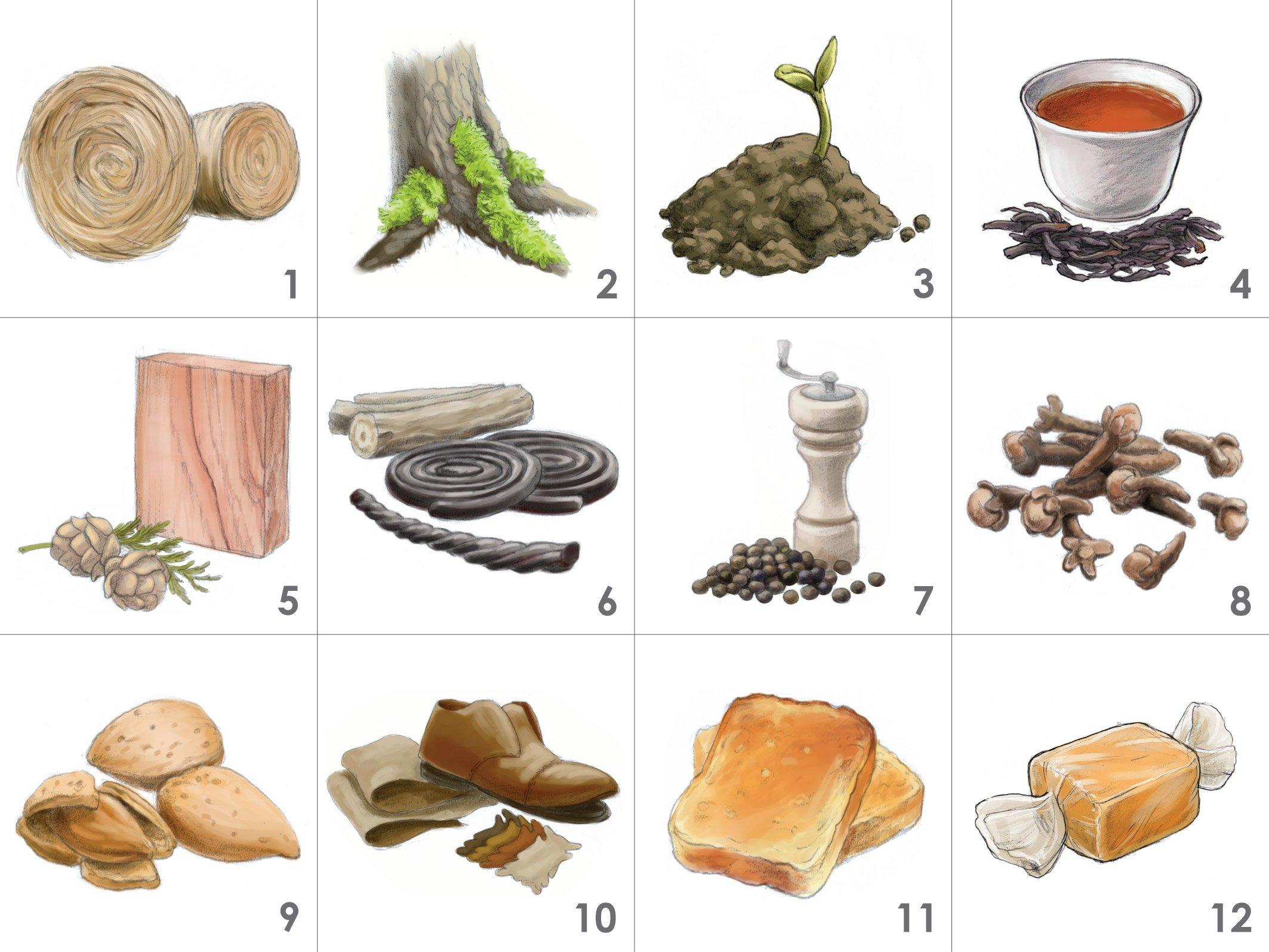Cigar Aroma Kit - 12 Aromas for Cigar Tasting and Education by Aromaster (Image #3)