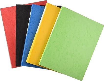 Papyrus 94520 - Pack de 10 carpetas, 2 anillas, A4, 16 m, multicolor: Amazon.es: Oficina y papelería
