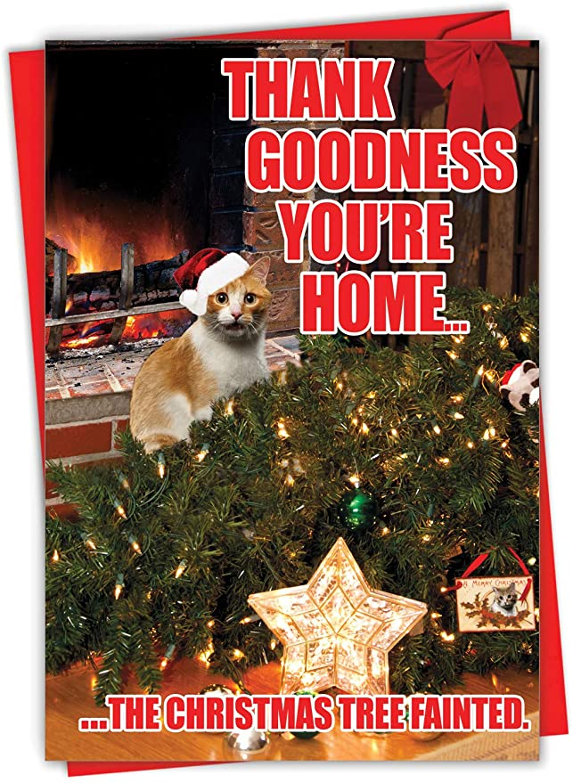 AmazonSmile: NobleWorks - Funny Cat Card for Christmas - Xmas Holiday Greeting, Pet Cats Notecard with Envelope - Tree Fainted Cat C2546XSG: Office Products