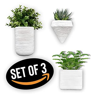 Doon Designs Ceramic Wall Planter - Wall Hanging Planters, Wall Planter, Air Planter, Great for Succulents, Air Plants, Faux Plants Set of 3 - White: Garden & Outdoor