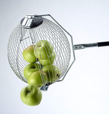 Recogepelotas de tenis | 40 Pelotas | Recogepelotas padel: Amazon.es: Deportes y aire libre
