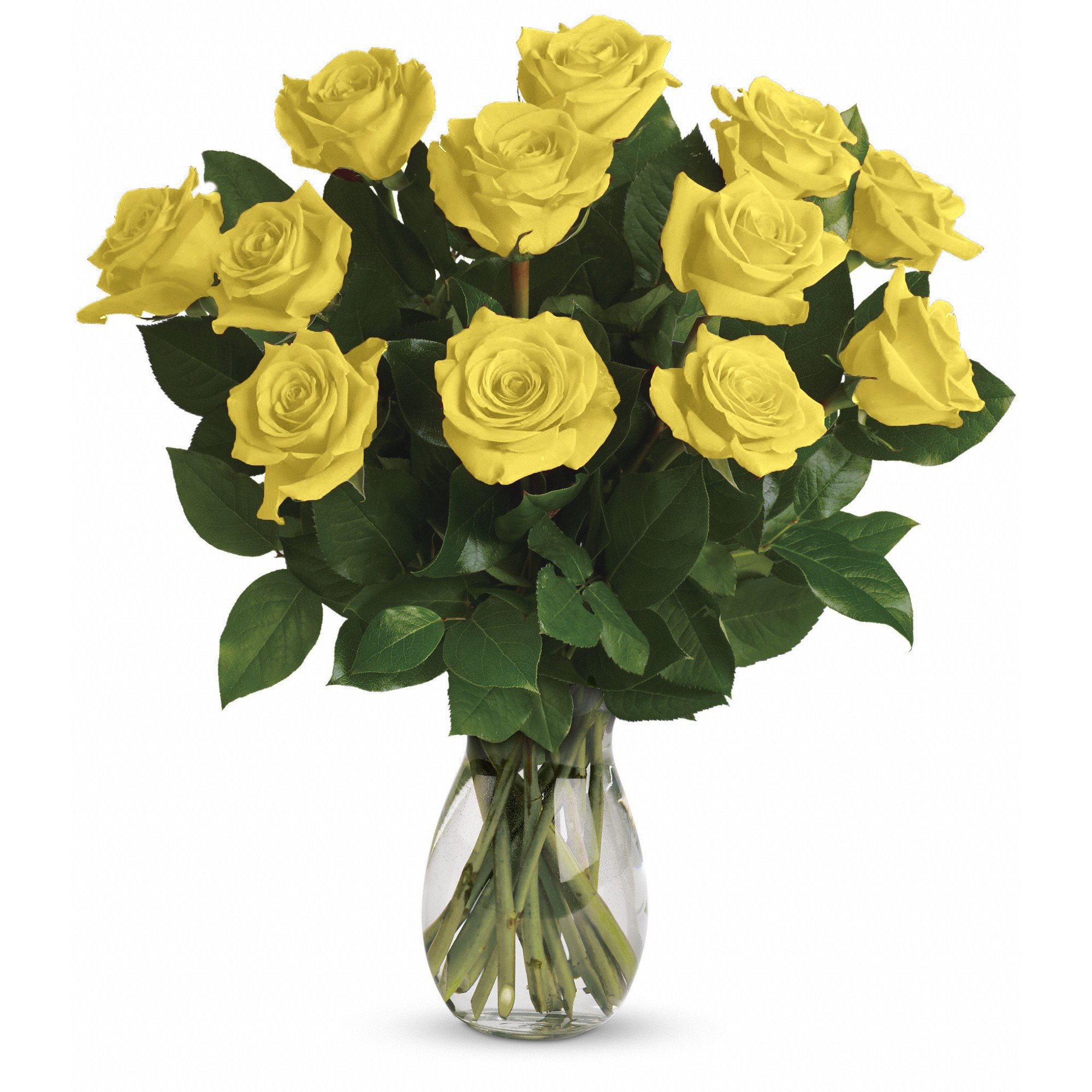 Farm Direct Rose Bouquet of 12 Fresh Cut Roses with Vase (Yellow)