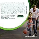 Natures Plus Glucosamine/Chondroitin/MSM Ultra