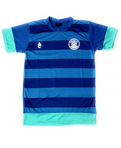 brand new ff763 ff2ed Buy AIFF India Football Team Blue Home Jersey/Dry FIT/Rubber ...