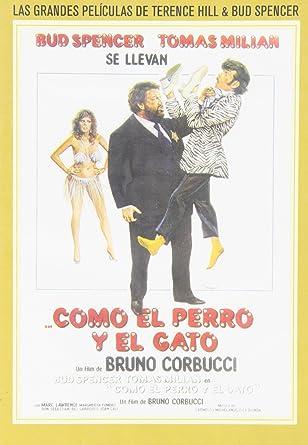 Amazon.com: Como El Perro Y El Gato (Cane E Gatto): Movies & TV