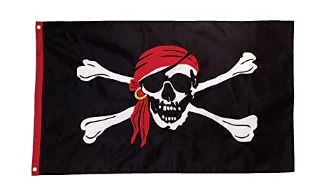 Amazon.com : in the breeze im a jolly roger applique grommet flag