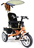 4-in-1 Lexx VIP 2015 Premium Kid's Trike, 3 Wheel Bike for Children - Gold Colour