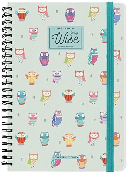 Amazon.com : Links ag121865 Agenda 12 Months, 15 x 21 cm ...