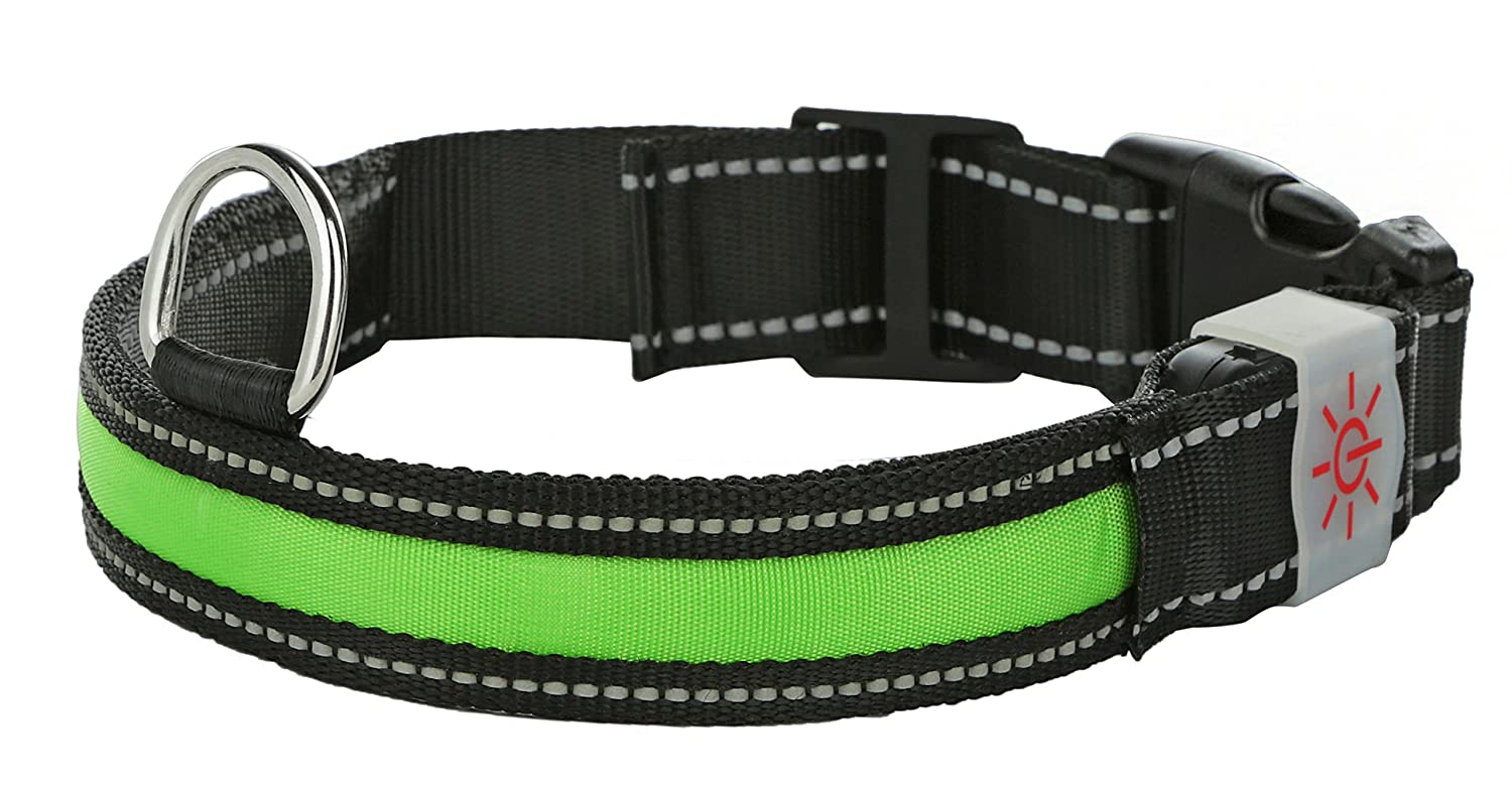 delicate Light Up Rechargeable LED Nylon Dog Collar With 3 Light Settings and Strong Buckle - Includes USB Charger - Keep Pet Safe And Visible