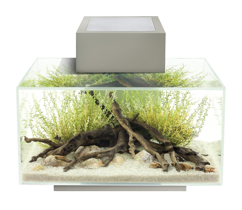 Amazon Fluval Edge 6 Gallon Aquarium with 21 LED Light Silver