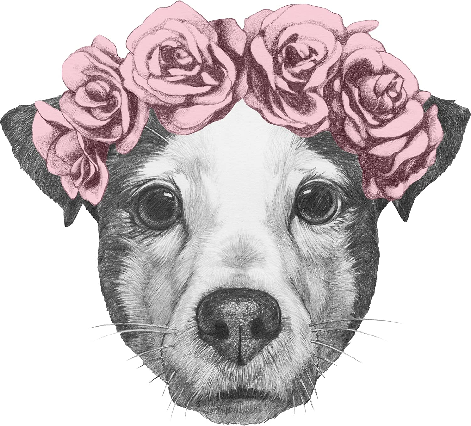 Amazon Adorable Cute Pitbull Puppy Dog With Floral Rose Crown