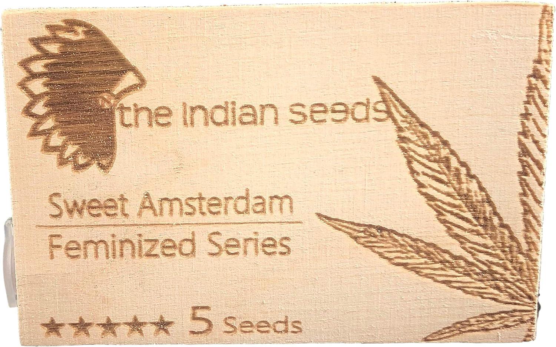 Sweet Ámsterdam - surtido de 5 semillas fem. para interior + ebook