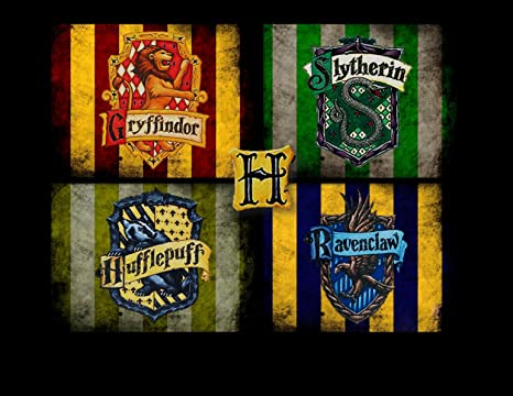 Amazon.com: Harry Potter Slytherin de Hogwarts Crest ...